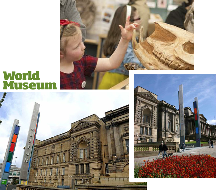 Museums Liverpool - World Museum